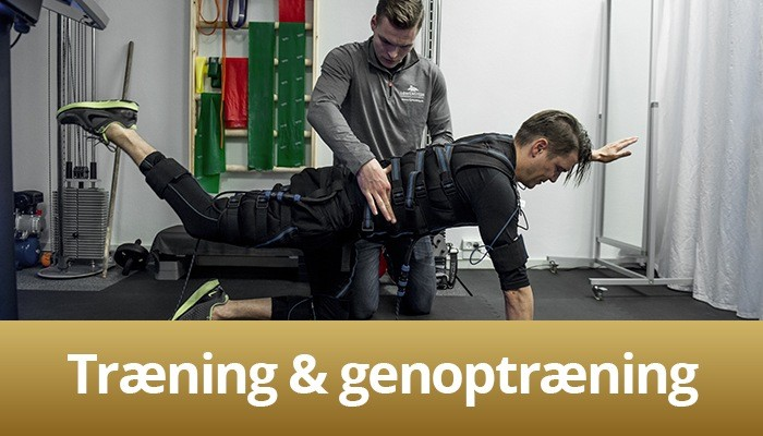Behandlingsbillede af træning og genoptræning